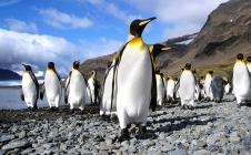 Mission climat : Calipso, dans le secret des aérosols et des nuages